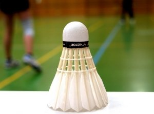 Close-up of a badminton shuttlecock