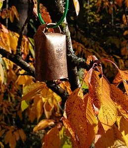 Sheep bell in tree