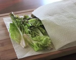 lettuce leaves on paper towels